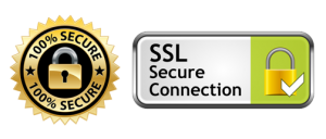 100% Secure Connection. 256-bit SSL Security Encryption Certificate